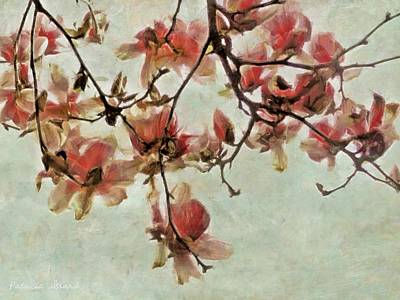 Digital Art - Pink Magnolia Blossoms by Patricia Strand