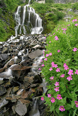 Photograph - Pink Monkeyflowers And Vidae Falls, Crater Lake Np, Oregon by Robert Mutch