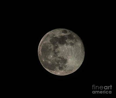 Photograph - Pink Moon by David Bearden
