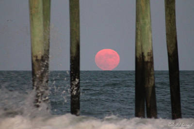 Photograph - Pink Moon Rising by Robert Banach