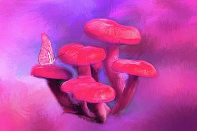 Amanita Mushroom Photograph - Pink Mushrooms by Darren Fisher