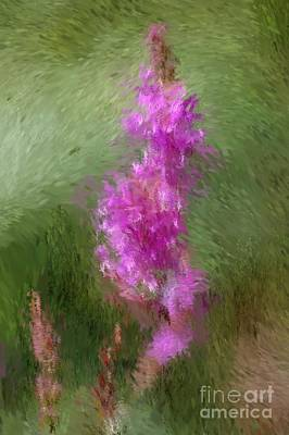 Pink Nature Abstract Art Print by David Lane