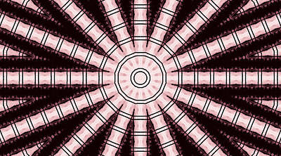 Digital Art - Pink On Black by Danielle R T Haney