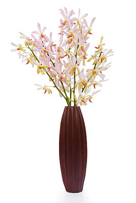 Pink Orchid In Wood Vase Art Print by Atiketta Sangasaeng