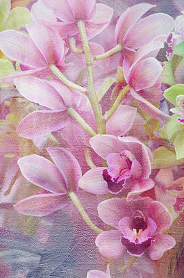 Photograph - Pink Orchids by Ann Bridges