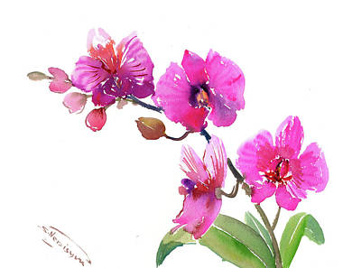Painting - Pink Orchids by Suren Nersisyan