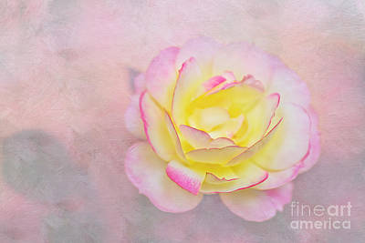 Photograph - Pink Passion Pastel By Kaye Menner by Kaye Menner