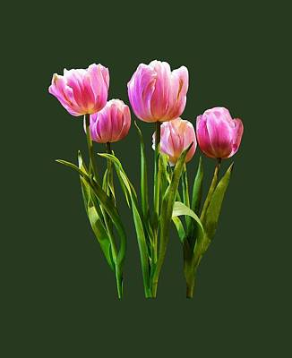 Photograph - Pink Pastel Tulips by Susan Savad