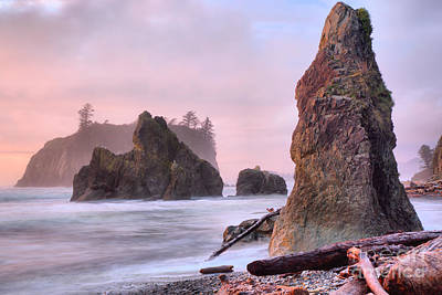 Photograph - Pink Pastels At Ruby Beach by Adam Jewell