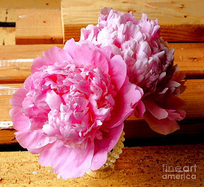 Photograph - Pink Peonies In Sawdust - A Yin And Yang Paintograph by Christine S Zipps