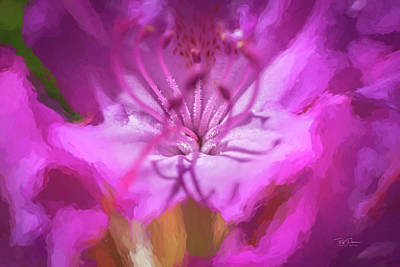Photograph - Pink Petal Dreams by Bill Posner