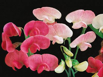 Photograph - Pink Petals by Dennis Buckman