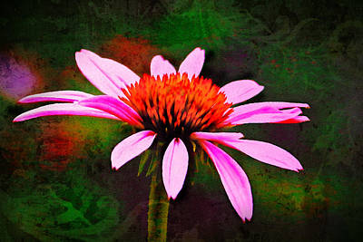 Digital Art - Pink Petals by Posey Clements