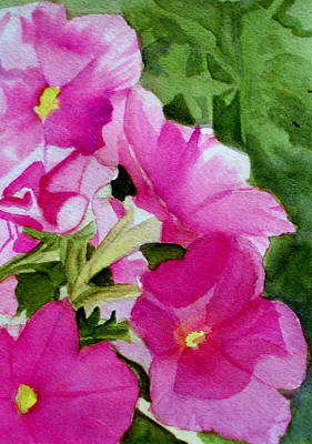 Royalty-Free and Rights-Managed Images - Pink Petunias by Nicole Curreri