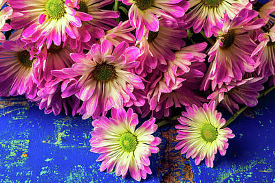 Pom Pom Photograph - Pink Poms On Blue Table by Garry Gay