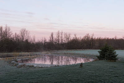 Pink Pond - A Peaceful Daybreak On The Farm Art Print by Georgia Mizuleva