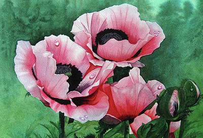 Drawing - Pink Poppies by Terry Mellway
