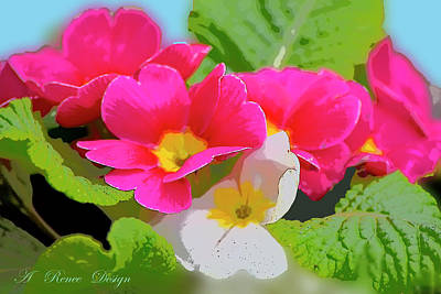 Photograph - Pink Primroses Nikon Effects by Renee Marie Martinez