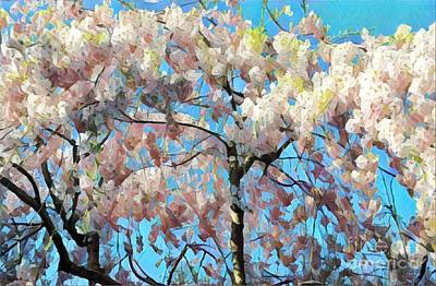 Photograph - Pink Princess - Flowering Tree In Spring by Miriam Danar