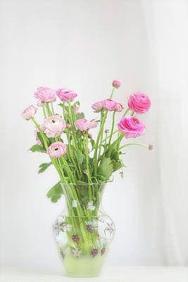 Photograph - Pink Ranunculus In Glass Vase by Susan Gary