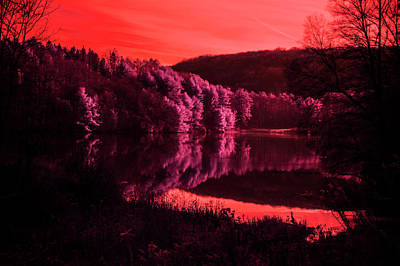 Photograph - Pink Reflections by Emily Stauring