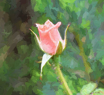 Painting - Pink Rose 2 by Cathy Jourdan