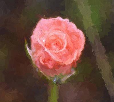 Painting - Pink Rose 4 by Cathy Jourdan