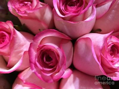 Pink Rose Bouquet Art Print