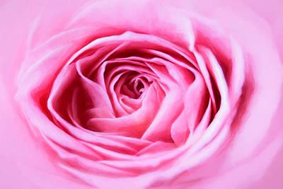 Photograph - Pink Rose by Cindi Ressler