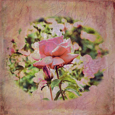 Photograph - Pink Rose Doily by Larry Bishop