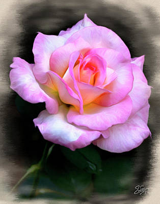 Photograph - Pink Rose Faux Pastel by Endre Balogh