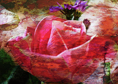 Digital Art - Pink Rose Featured by Marie Jamieson