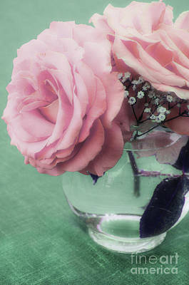 Photograph - Pink Rose In Vase  by Jim And Emily Bush