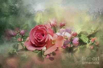 Photograph - Pink Rose by Janette Boyd