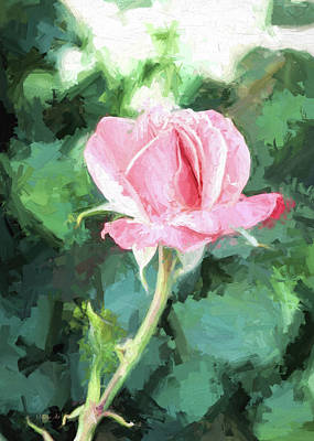 Photograph - Pink Rose by OLena Art Brand