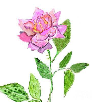 Painting - Pink Rose, Painting by Irina Afonskaya