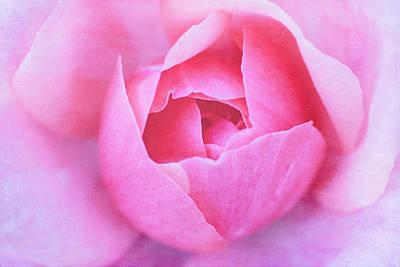 Photograph - Pink Rosebud by Cindi Ressler