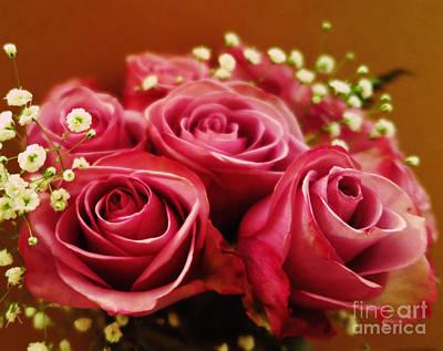 Photograph - Pink Roses Abstract by Tara Shalton