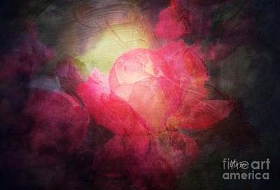 Digital Art - Pink Roses By Moonlight by Maria Urso