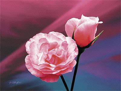 Pink Roses Art Print by Jan Baughman