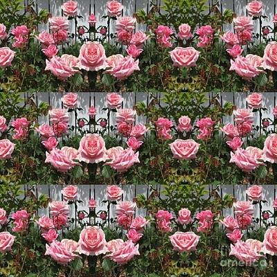 Photograph - Pink Roses  by Nora Boghossian