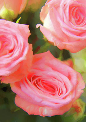 Photograph - Pink Roses Painterly by Mary Bedy