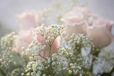 Photograph - Pink Roses With Babys Breath by Joni Eskridge