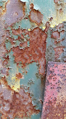 Photograph - Pink Rust by Zac AlleyWalker Lowing