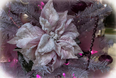 Photograph - Pink Shimmery Christmas by Debra Forand