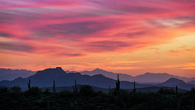 Photograph - Pink Silhouette Sunset  by Saija Lehtonen