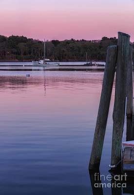 Southern Maine Photograph - Pink Sky Pink Ocean by Elizabeth Dow