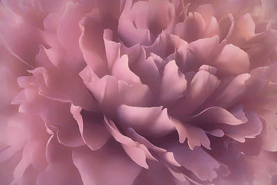 Art Print featuring the photograph Pink Splash by Darlene Kwiatkowski