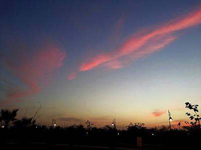 Photograph - Pink Streak by Atullya N Srivastava