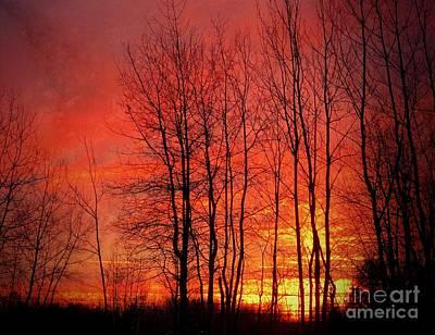 Photograph - Pink Sunrise by France Laliberte
